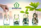 investment - Blog- post