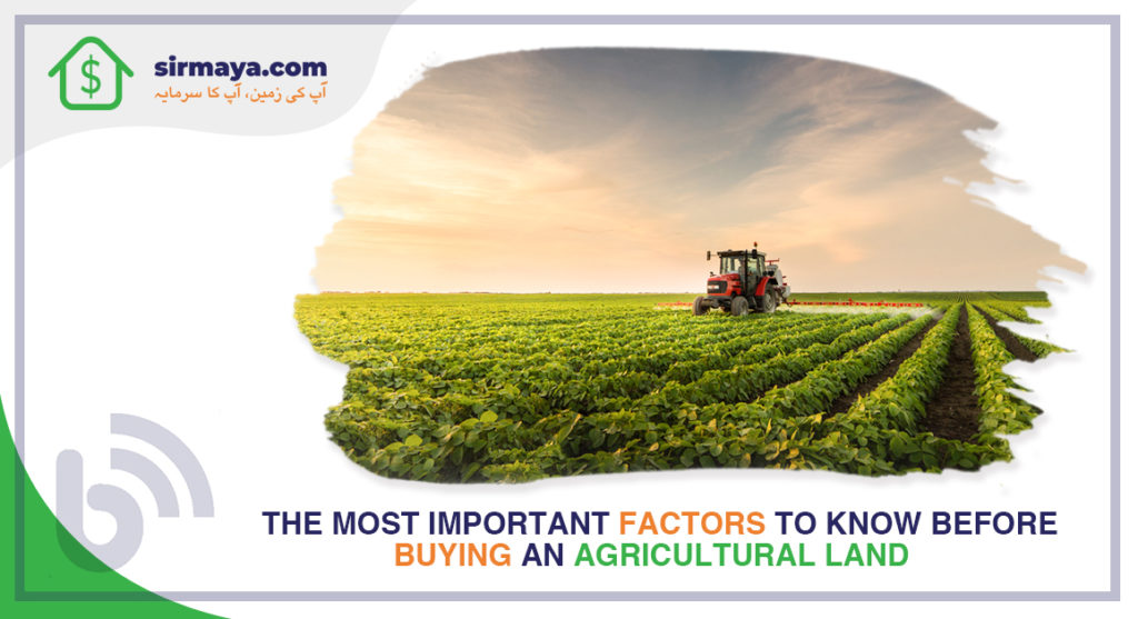The Most Important Factors to Know Before Buying an Agricultural Land