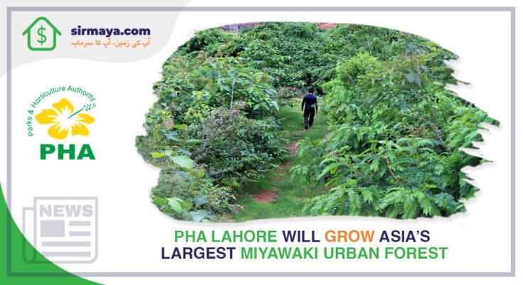 Asia's Largest Miyawaki Urban Forest