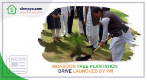 Monsoon Tree Plantation Drive Launched by PM